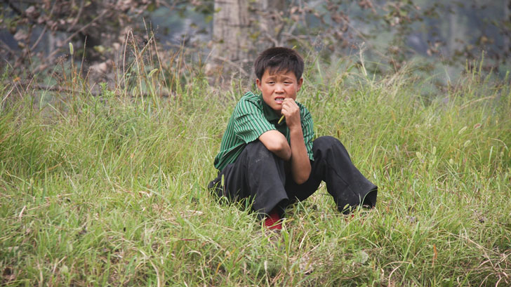 Boy sitting in a field